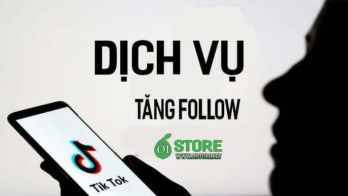 dich-vu-tang-follow-tiktok